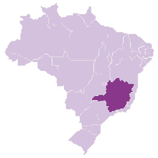 Minas Gerais State