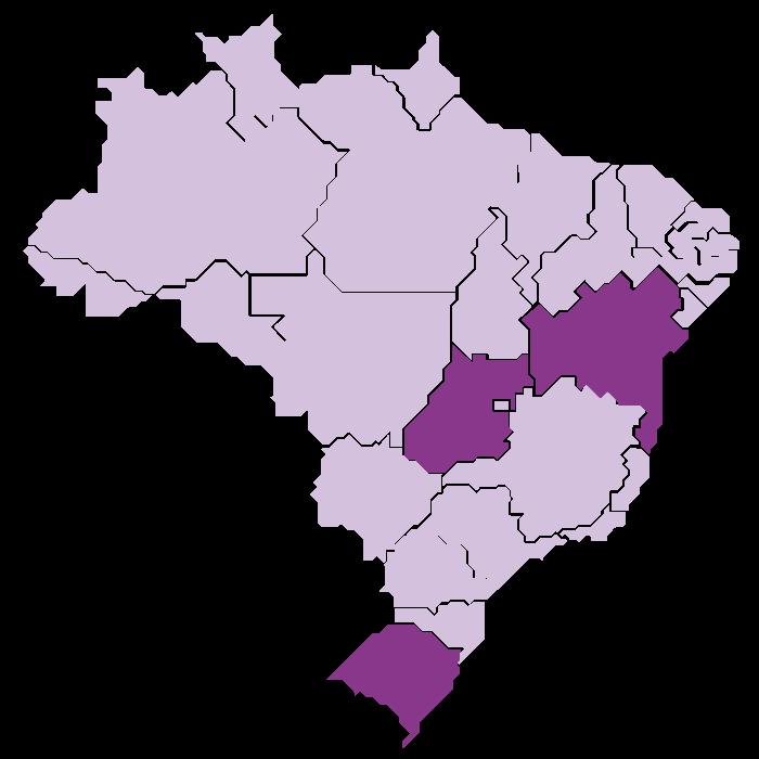 Bahia, Goiás and Rio Grande do Sul States