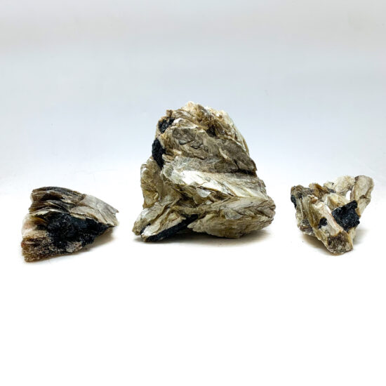 Black Tourmaline with Mica Clusters
