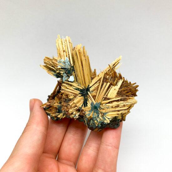 Golden Rutile Stars on Hematite
